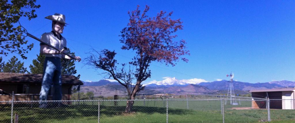 Cowboy Longs Peak